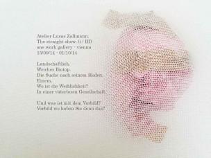 Press-Lucas-Zallmann-the-straight-show-one-work-gallery-vienna-2014-germ